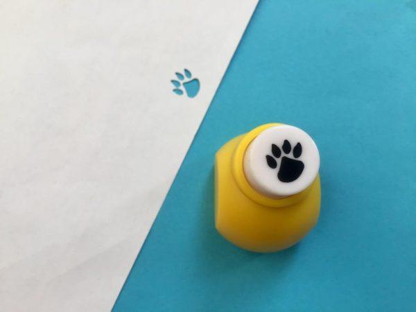 پانچ کوچک طرح پنجه حیوان